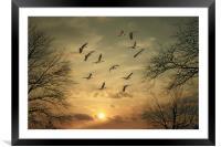 AUTUMN SUNSET, Framed Mounted Print