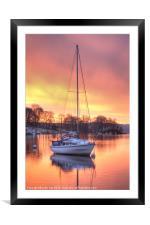 Morning Glory, Framed Mounted Print