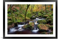 Autumn Colours in Padley Gorge , Framed Mounted Print