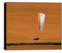 Wheat Field Paraglider