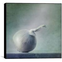 onion, Box Print