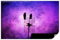 Two Crow Violet, Print