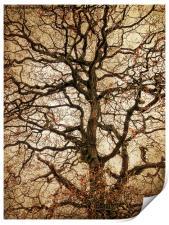 Autumn Love Tree, Print