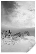 Snowy Gate, Print