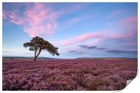 Egton Moor Heather, Print