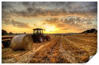 Tractor Harvesting Sunset, Print
