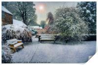 Snowy Park, Print