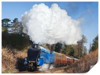 Steam train takes us back to the 1930s, Print