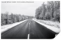 frozen road, Print