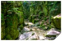 green world  , Print