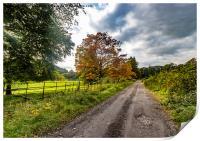 Autumn Walk, Print