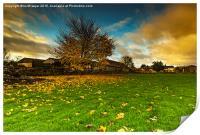 Autumn Dawn, Print