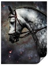 The Horse Among the Stars, Print