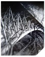 Panther Hollow Bridge, Pittsburgh, Pennsylvania, Print