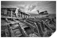Wooden Remains, Print