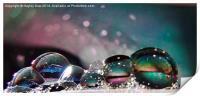 Bubble Beauty, Print