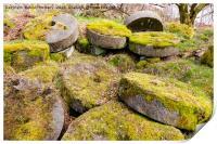 Abandoned Millstones - Peak District, Print