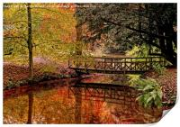 Autumn Reflections in the Stream, Print
