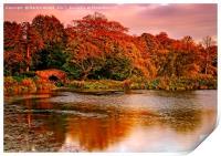Autumn Sunset at Hardwick Park, Print