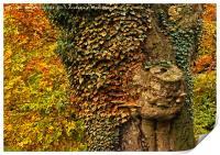 Autumn Colours, Print