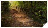 Autumn steps, Print