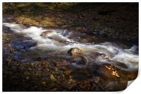 The Neath river, Print