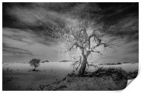 White Sands National Monument #1, mono(dark), Print