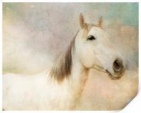 Spirit Horse, Print