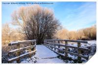 Snowy Nantwich, Print