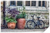 Pots and Bicycle, Print