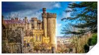 Arundel Castle Sussex, Print