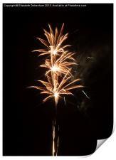 Firework Threesome, Print
