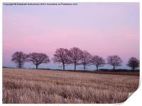 Pastel Treeline in February, Print