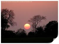 Sunset Ball, Print