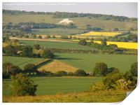 Ivinghoe View to Whipsnade, Print