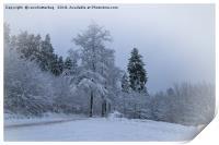 Winter Feeling, Print