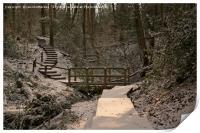 Snowy Ironbridge Gorge, Print