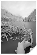 Wintry Lake Bohinj, Print