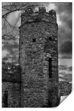 East Wall Tower, Print