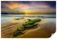 Golden Sands., Print