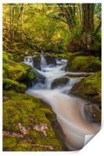 Golitha Falls. , Print