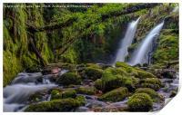 Twin Waterfall, Print