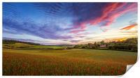 Sunset on Poppy Field in Kent, Print