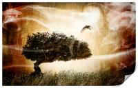 The magic tree, Print