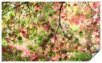 Glorious Autumn , Print