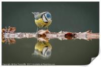 Reflections......, Print