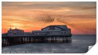 Starlings murmuration, Print