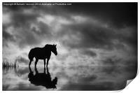 Horse, Print
