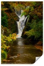 Autumn Falls, Print