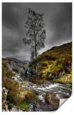 Lonely Tree, Print
